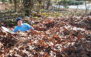 man lieing in leaves