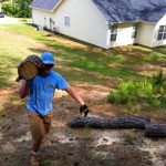 Storm Clean Up Roswell Ga