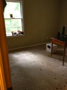 Carpet Removal job in Atlanta