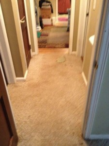 old carpet in hallway needs to be removed