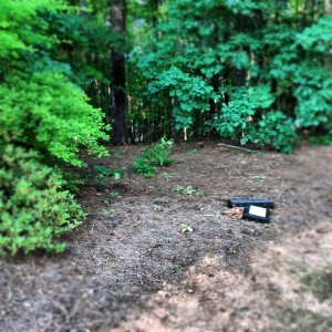 playset removed from Alpharetta home