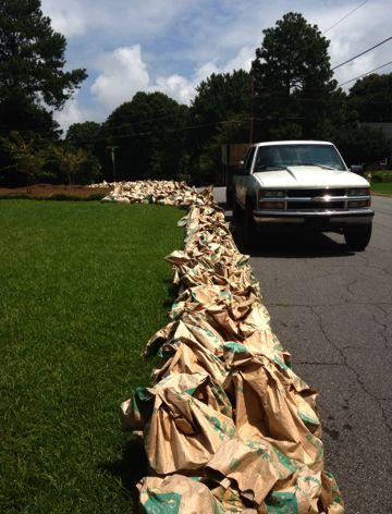yard debris bags