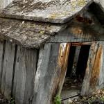 junk dog house