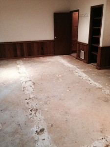 carpet demo and removal