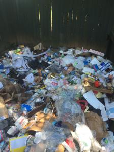 junk around a dumpster in atlanta