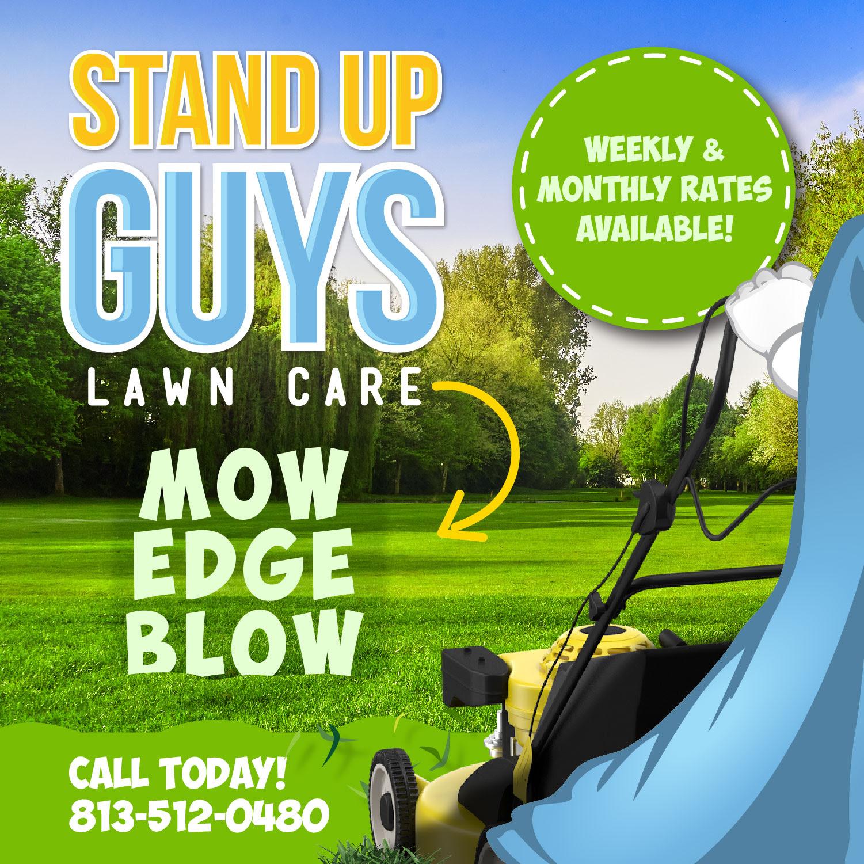 lawn care tampa